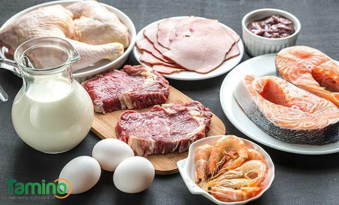 Chất đạm cung cấp protein cho cơ thể