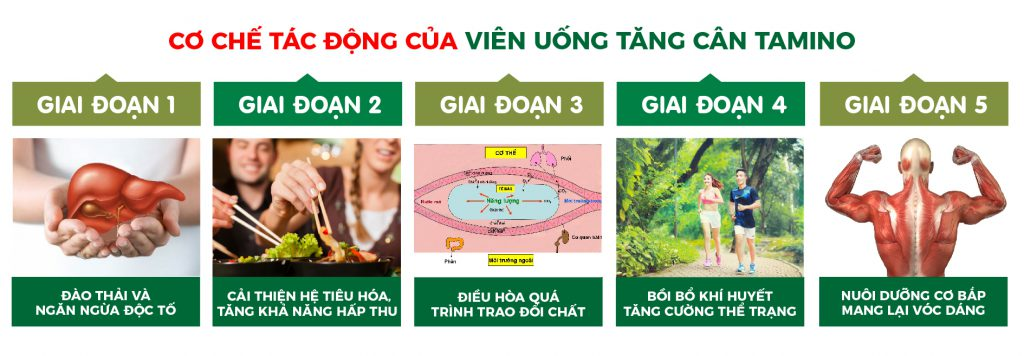 cach-tang-can-cho-nguoi-kho-hap-thu-17