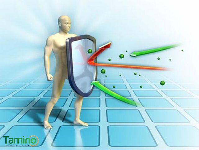 Tăng cường hệ miễn dịch cho cơ thể