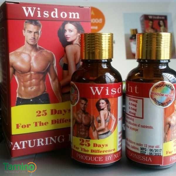 thuốc tăng cân wisdom weight indonesia