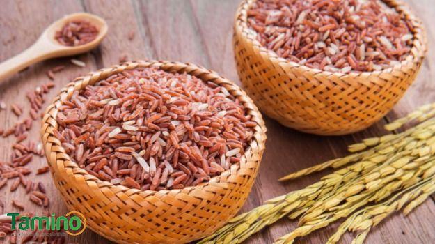 Rốt cuộc ăn gạo lứt nhiều có tăng cân không?